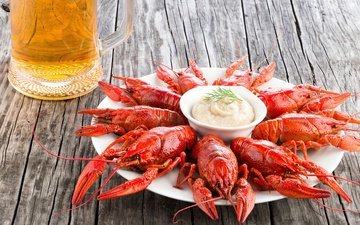 beer, plate, sauce, seafood, cancers
