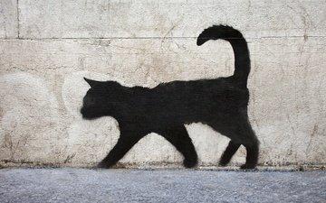 texture, wall, graffiti, surface, brick, black cat