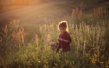 grass, field, children, girl, child, childhood, wildflowers, darya stepanova