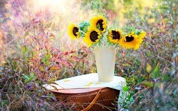 flowers, grass, nature, plants, bouquet, basket, sunflowers, vase, bokeh