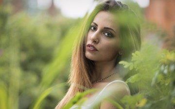 зелень, девушка, взгляд, размытость, модель, волосы, лицо, carlotta