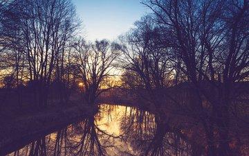река, природа, лес, парк, весна