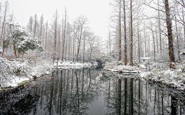 река, природа, зима, пейзаж, парк, мост, eddie y y cheng