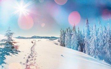 деревья, горы, снег, природа, лес, зима, пейзаж, блики, следы