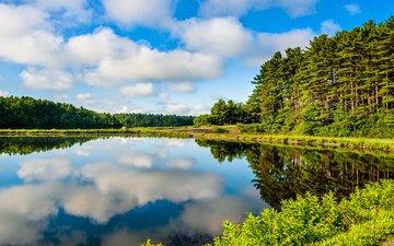 небо, облака, деревья, озеро, природа, лес, отражение, пейзаж, лето, karen grigoryan