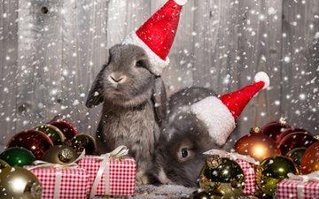 новый год, животные, подарки, шарики, кролики, рождество, зайцы, колпаки