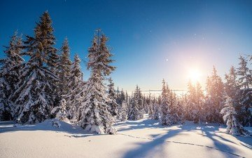 небо, деревья, снег, природа, лес, зима, пейзаж