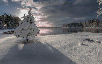 небо, облака, деревья, озеро, снег, природа, лес, зима, ель