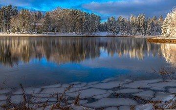 озеро, природа, лес, зима, пейзаж