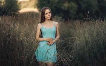 трава, девушка, платье, взгляд, модель, волосы, лицо, шатенка