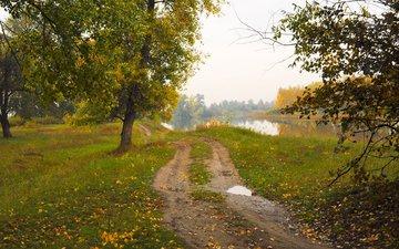 дорога, природа, пейзаж, осень
