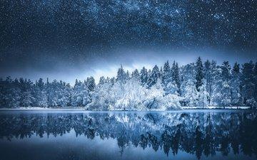 ночь, озеро, природа, лес, зима, отражение, пейзаж, звезды