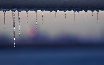 macro, ice, icicles