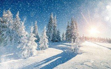небо, деревья, снег, природа, зима, пейзаж, снегопад