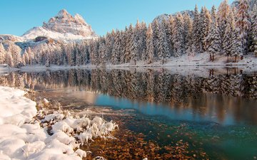 trees, river, mountains, snow, nature, forest, winter, reflection