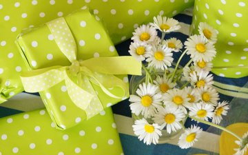 flowers, petals, gifts, chamomile, bouquet, white