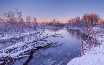река, снег, природа, зима, пейзаж, стволы, кусты