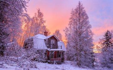 trees, snow, nature, forest, winter, house, geert weggen