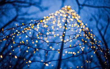 new year, macro, branches, christmas, lights, garland