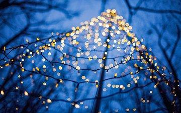 новый год, макро, ветки, рождество, огоньки, гирлянда