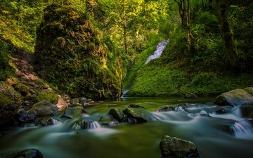 river, rocks, nature, forest, waterfall