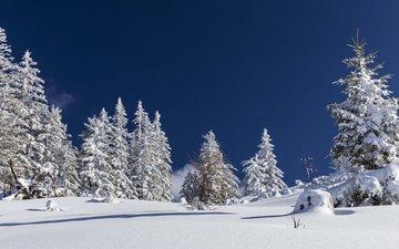 небо, деревья, снег, природа, лес, зима, nicole mikulasch
