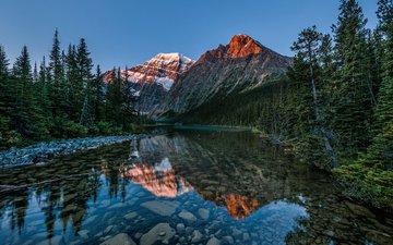 озеро, горы, природа, лес, отражение, пейзаж, сосны, альберта, национальный парк джаспер