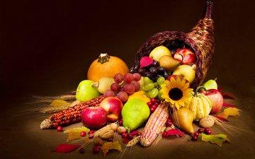 орехи, виноград, фрукты, яблоки, колосья, кукуруза, овощи, корзинка, тыква, груши, осенний урожай