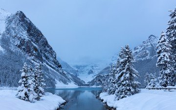 trees, lake, mountains, snow, forest, winter, canada, national park, lake louisebanff