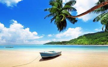 sea, beach, boat, tropics, 1