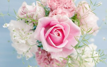 flowers, roses, bouquet, gypsophila