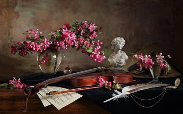 flowers, girl, branches, notes, violin, glass, vase, pen, bust, still life, andrey morozov