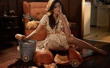 девушка, кот, взгляд, модель, волосы, лицо, кресло, уборка, тыква, ведро, сидя, кристин макконнелл