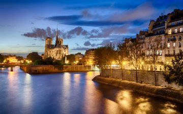 lights, the city, paris, france, notre dame de paris