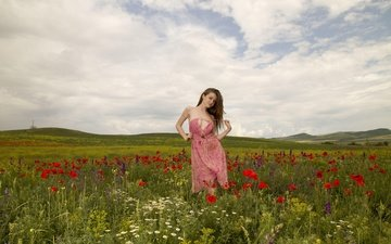 the sky, flowers, grass, clouds, nature, girl, summer, look, hair, face, wildflowers, emily blooml
