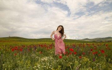 небо, цветы, трава, облака, природа, девушка, лето, взгляд, волосы, лицо, полевые цветы, emily blooml