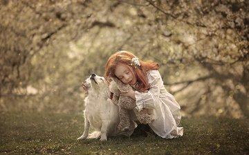 природа, собака, рыжая, девочка, игрушка, ребенок, животное, ann podsiedlik