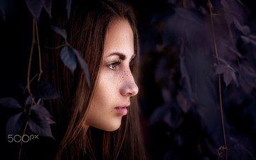 листья, девушка, взгляд, модель, профиль, волосы, лицо, веснушки, карие глаза, alina batrak, yuri leo