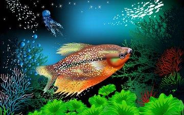 рыбы, кораллы, подводный мир