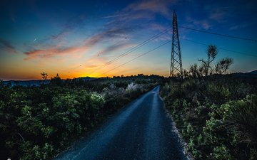 the sky, road, clouds, plants, sunset