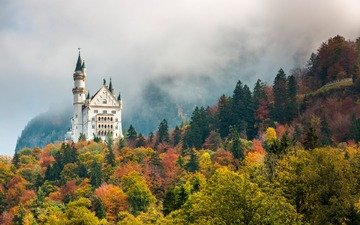 nature, forest, castle, autumn, germany, neuschwanstein, bayern, nowenstein