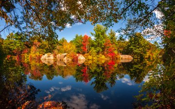 the sky, clouds, trees, lake, nature, forest, reflection, autumn