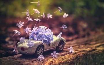flowers, toy, machine, model