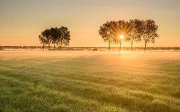 пейзаж, утро, туман, поле, рассвет