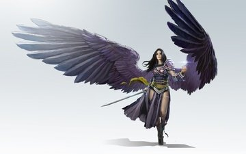 art, girl, warrior, weapons, wings, fantasy, black planeswalker, lvl, todd hebenstreit