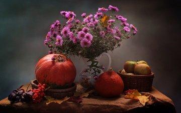 цветы, листья, яблоки, осень, хризантемы, тыква, натюрморт, рябина