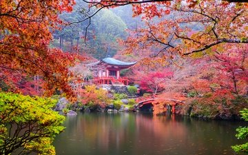 trees, stones, leaves, ladder, park, branches, the bushes, bridge, autumn, pagoda, japan, kyoto, pond, sean pavone