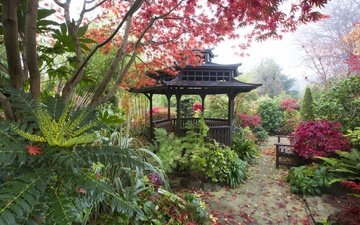 trees, leaves, fog, the bushes, autumn, garden, england, bench, gazebo, walsall garden