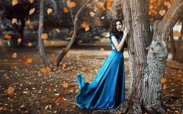 tree, girl, autumn, model, falling leaves, venkara, miki macovei come with