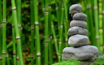 harmony, tree, stones, flower, calm, asia, garden, bamboo, buddha, sheet, stay, plant, figure, zen, japanese, relaxation, natural, the area, thinking, wooded, patience, environment